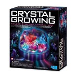 Crystal Growing Color Changing Crystal Light
